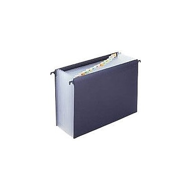Staples Hanging Poly Expanding File, Letter, Jan-Dec Index, 12 Pockets, Each