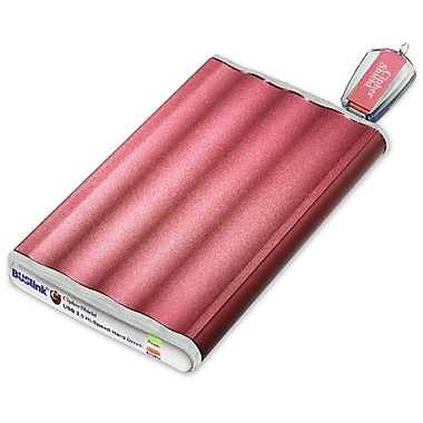 Buslink 120GB CipherShield External Hard Drive