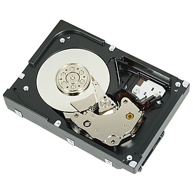 Dell-IMSourcing 2TB LFF NL SAS 2.0 Hot Plug Internal Hard Drive