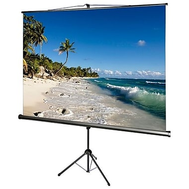 Draper® AccuScreens® 800073 136in. Portable TriPod Projector Screen, 1:1, Black Casing