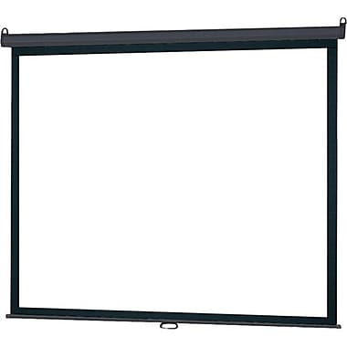 Infocus® SC-MAN 100in. Manual Pull Down Projector Screen, 4:3, White Casing