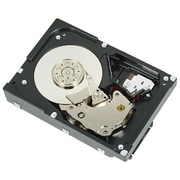 Dell-IMSourcing 3TB LFF NL SAS 2.0 Internal Hard Drive