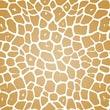 Shamrock 20in. x 30in. Giraffe Printed Tissue Paper, Brown/White