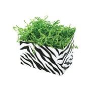 Shamrock 6 3/4 x 4 x 5 Zebra Stripes Basket Box, Black on White