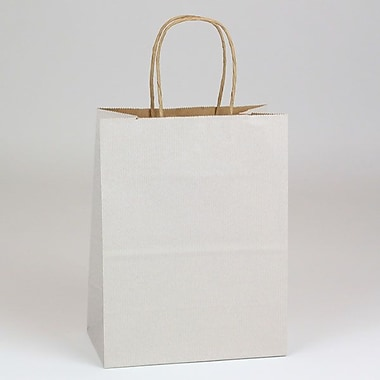 Shamrock 8in. x 4 3/4in. x 10 1/2in. Shadow Stripe Kraft Paper Chimp Shopping Bags, Picket Fence Gray