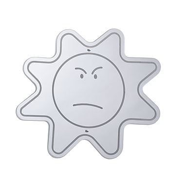 Whitney Brothers Angry Face Mirror