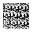 20in. x 30in. Zebra Tissue Paper, Black/White