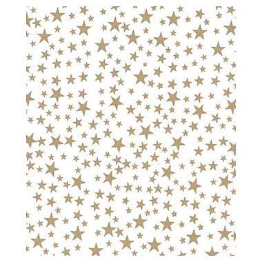 20in. x 30in. Gold Stars Tissue Paper, White