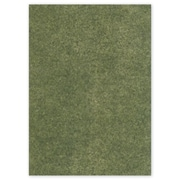 "12"" x 12"" Solid Food Grade Tissue Paper, Bay Leaf"