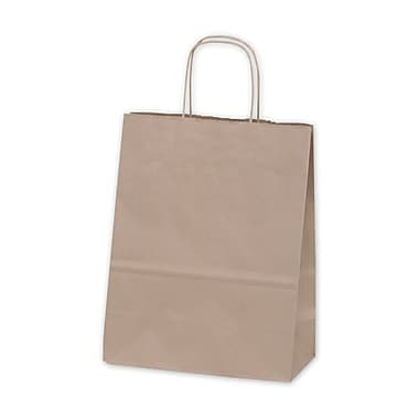 8 3/4in. x 6in. x 13in. Debbie Recycled Paper Shoppers, Kraft