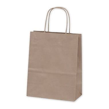Kraft Paper 10.75in.H x 8.25in.W x 4.25in.D Cub Shopper Bags, Kraft, 250/Pack