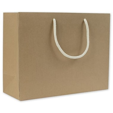 13in. x 5in. x 10in. Recycled Groove Euro-Shoppers, Kraft