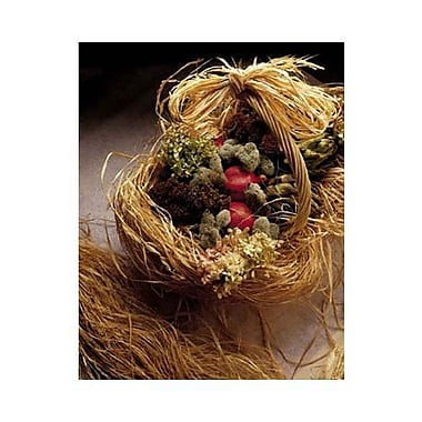 Natural Raffia, 8 oz., 4/Pack