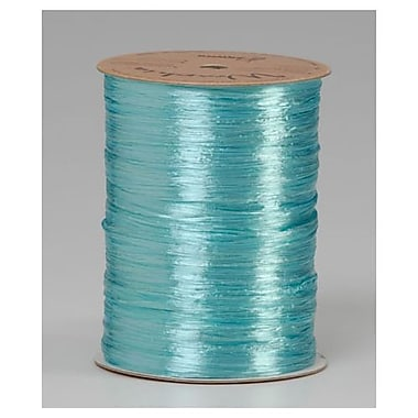 1/4in. x 100 yds. Pearlized Wraphia Ribbon, Robin's Egg Blue