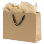 "Kraft Paper 12""H x 16""W x 6""D Shopping Bags, Brown, 100/Pack"