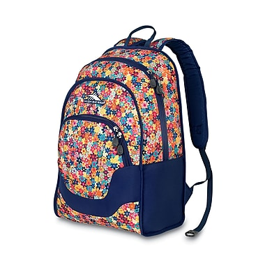 High Sierra Widget Backpack