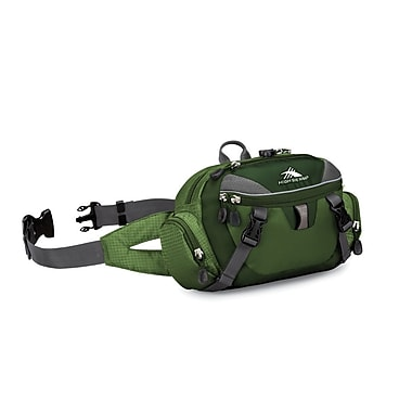 High Sierra Envoy Lumbar Pack Amazon Green