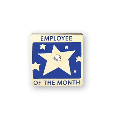 Baudville® Lapel Pin, Employee of the Month With Gem