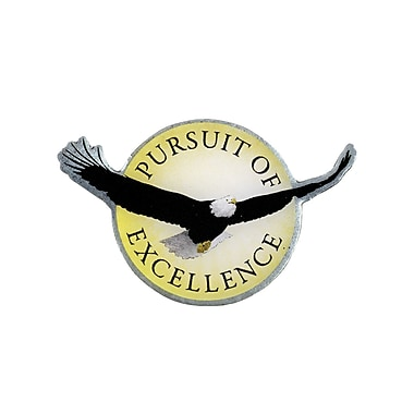 Baudville® Lapel Pin, Pursuit of Excellence