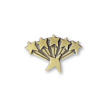 Baudville® Lapel Pin, Five Star Service