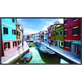 NEC MultiSync® V463 V Series 46in. Commercial-Grade High-Performance LED-Backlit Full HD LCD Display