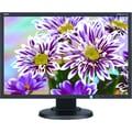 NEC MultiSync E223W-BK - LED monitor - 22in.