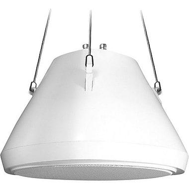 speco technologies® SP-30PT 70/25V/8 Ohm Hanging Pendant Speaker, White