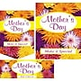 22 Pcs Budget Sign Kit MOTHER'S DAY, Multicolor