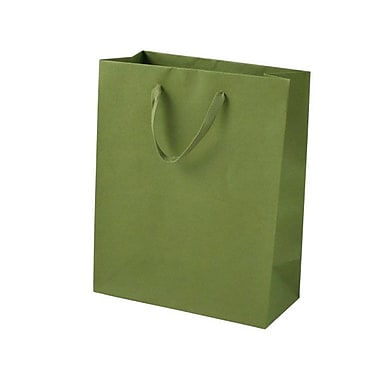 Shamrock 10in. x 8in. x 4in. Cub Recycled Paper Eurotote Bags, Jungle Green