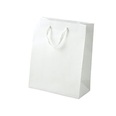 Shamrock 10in. x 8in. x 4in. Cub Recycled Paper Eurotote Bags, White