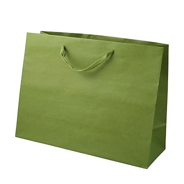 Shamrock 12in. x 16in. x 6in. Large Vogue Recycled Paper Eurotote Bags, Jungle Green