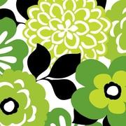 "Shamrock 24""W Bold Floral Gift Wrap, Green/Black"