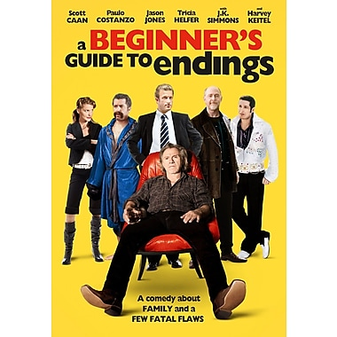 A Beginner's Guide To Endings (DVD)