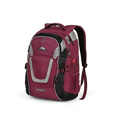 High Sierra AT702 Backpack BoysENberry