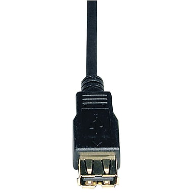 Tripp Lite 10' USB 2.0 Type A Male to Type A Female Extension Cable, Black