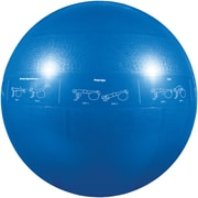 Gofit GF-55PRO Professional Stability 55 Cm Ball And Core Performance Training DVD, Dark Red