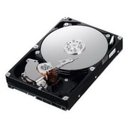 IBM 81Y9786 500GB SATA/600 Internal Hard Drive