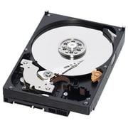 IBM 81Y9722 250GB SATA/600 Internal Hard Drive