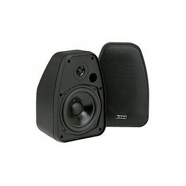 BIC America™ ADATTODV-52SI Indoor/Outdoor Speaker, Black