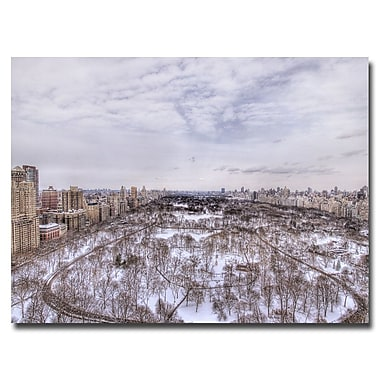 Trademark Fine Art Ariane Moshayedi 'View from the Top' Canvas Art 22x32 Inches
