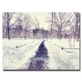 Trademark Fine Art Ariane Moshayedi 'The Snow Effect' Canvas Art 30x47 Inches