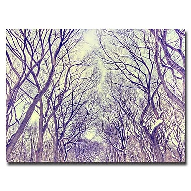 Trademark Fine Art Ariane Moshayedi 'The Mall' Canvas Art 22x32 Inches