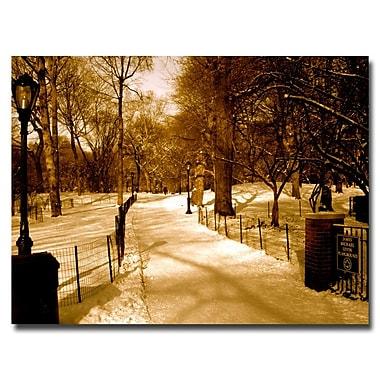 Trademark Fine Art Ariane Moshayedi 'Winter Playground' Canvas Art 35x47 Inches