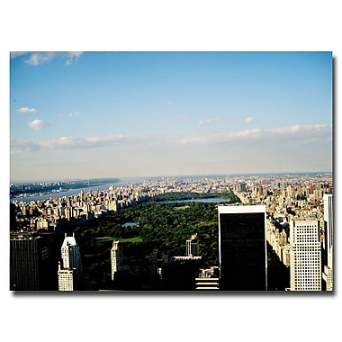 Trademark Fine Art Ariane Moshayedi 'NYC Skies' Canvas Art 35x47 Inches