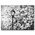 Trademark Fine Art Ariane Moshayedi 'Streetlamp' Canvas Art 30x47 Inches
