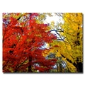 Trademark Fine Art Ariane Moshayedi 'Fall Mashup' Canvas Art 18x24 Inches