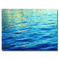Trademark Fine Art Ariane Moshayedi 'Ripples' Canvas Art 30x47 Inches