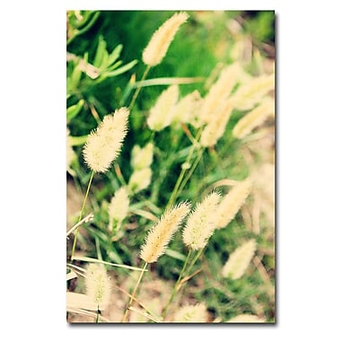 Trademark Fine Art Ariane Moshayedi 'Beach Flowers' Canvas Art