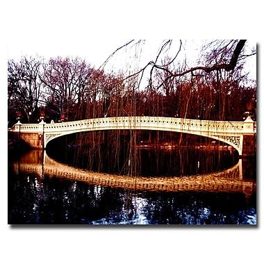 Trademark Fine Art Ariane Moshayedi 'The Bridge' Canvas Art 24x32 Inches