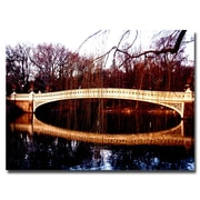 Trademark Fine Art Ariane Moshayedi 'The Bridge' Canvas Art 24x32 Inches